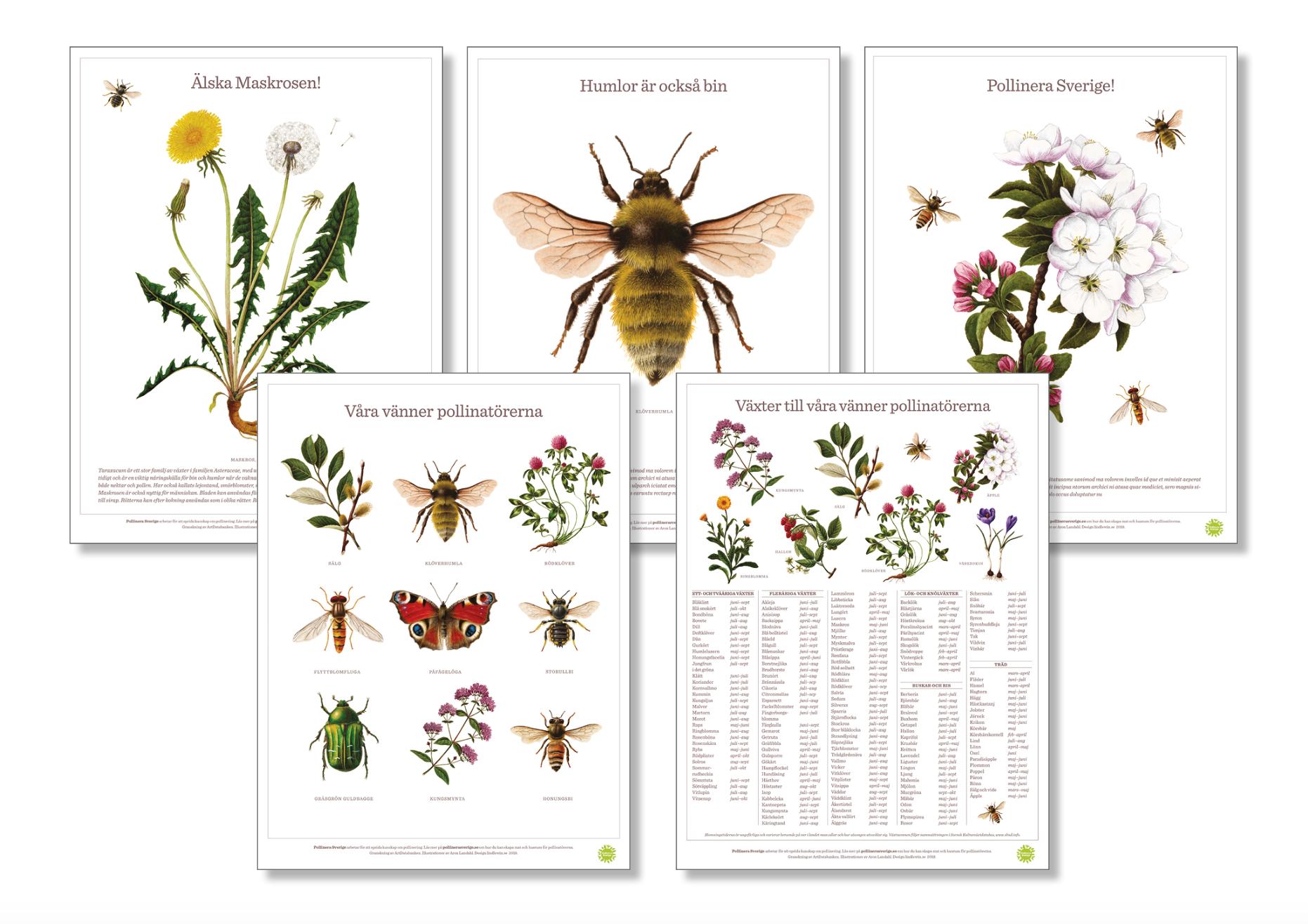 affischer pollinera sverige